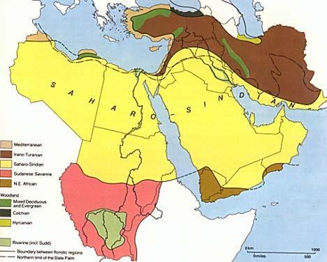 Levant - Vegetation map of egypt
